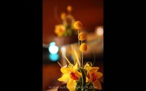 Blogweb-063